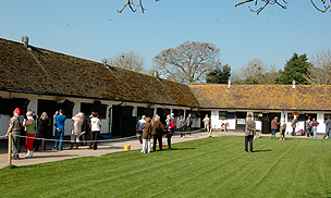 Visit Some of the Leading Stables in the UK