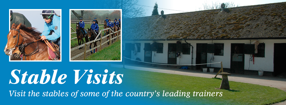 Stable Visit - Visit the stables of some of the country's leading trainers
